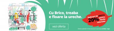 Reducere de pana la 20% la flori la Brico Depot